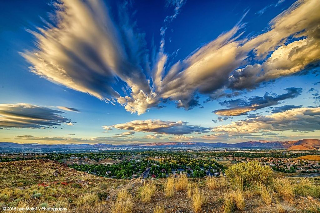 Image of the Truckee Meadows with shrub grasses in foreground and striking clouds in the sky.
