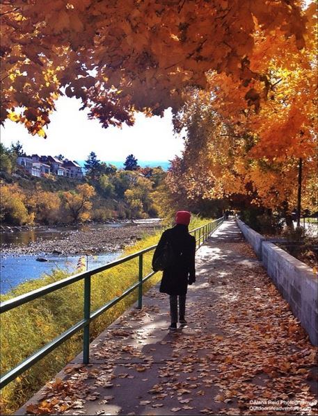 Image of a figure walking along the Truckee River with colorful fall leaves on the trees.